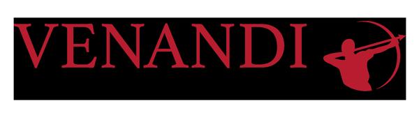 Venandi Systems Logo